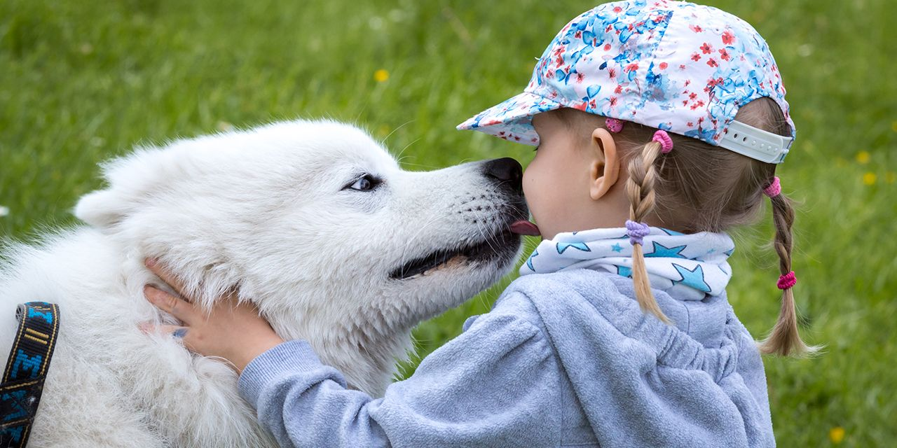 Wpływ psa nazdrowie człowieka